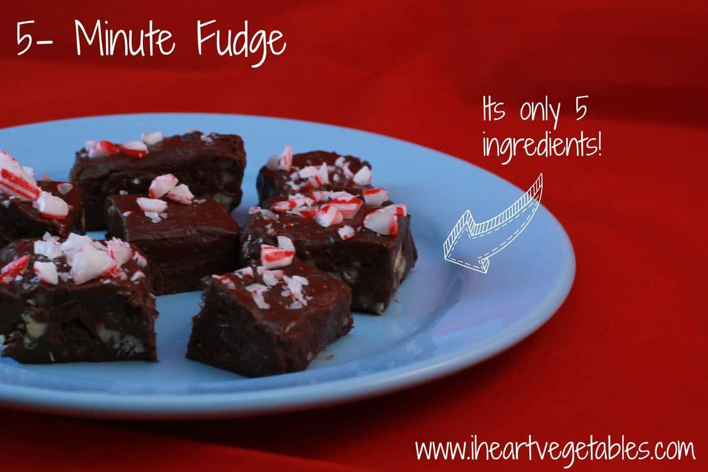 5 ingredient fudge