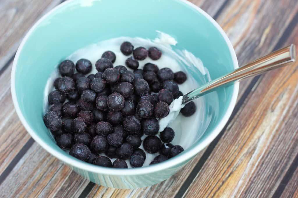 greek yogurt just blueberries