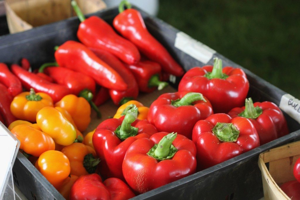 peppers at the heritage harvest festival