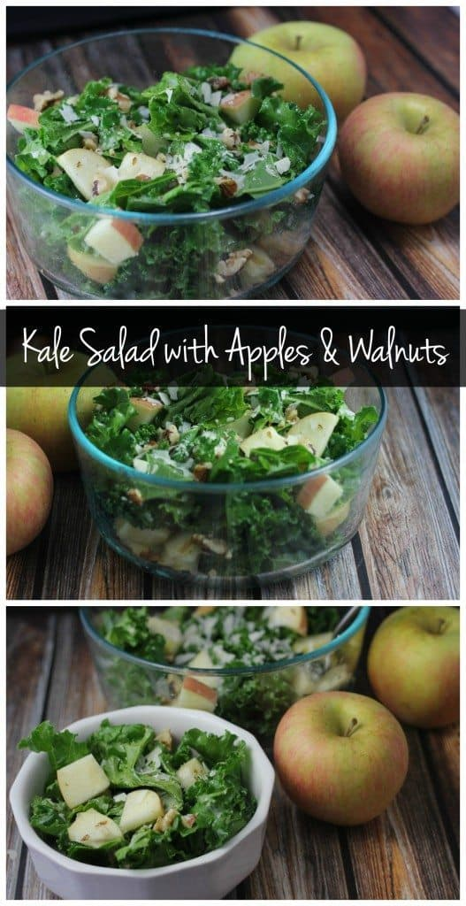This kale salad is sweet & tangy with a delicious crunch from the apples and walnuts! It's vegetarian and gluten free!