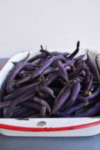 Quick and Easy Purple Green Beans Recipe