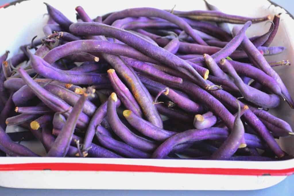 easy purple beans recipe