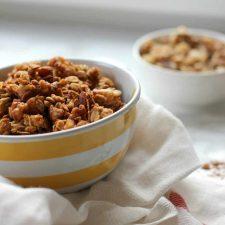applesauce granola