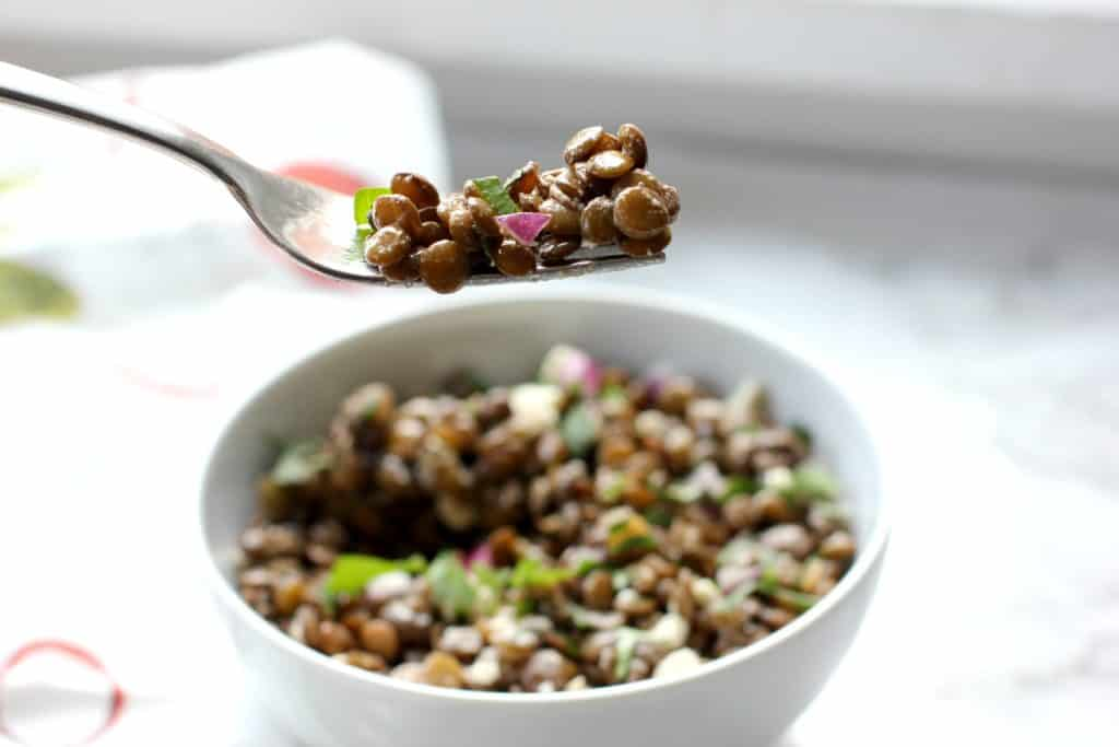 lentil salad on a fork