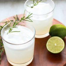 vegan gin fizz recipe