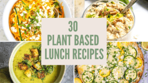 30 Plant Based Lunch Ideas
