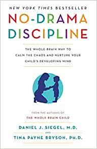 no drama discipline book
