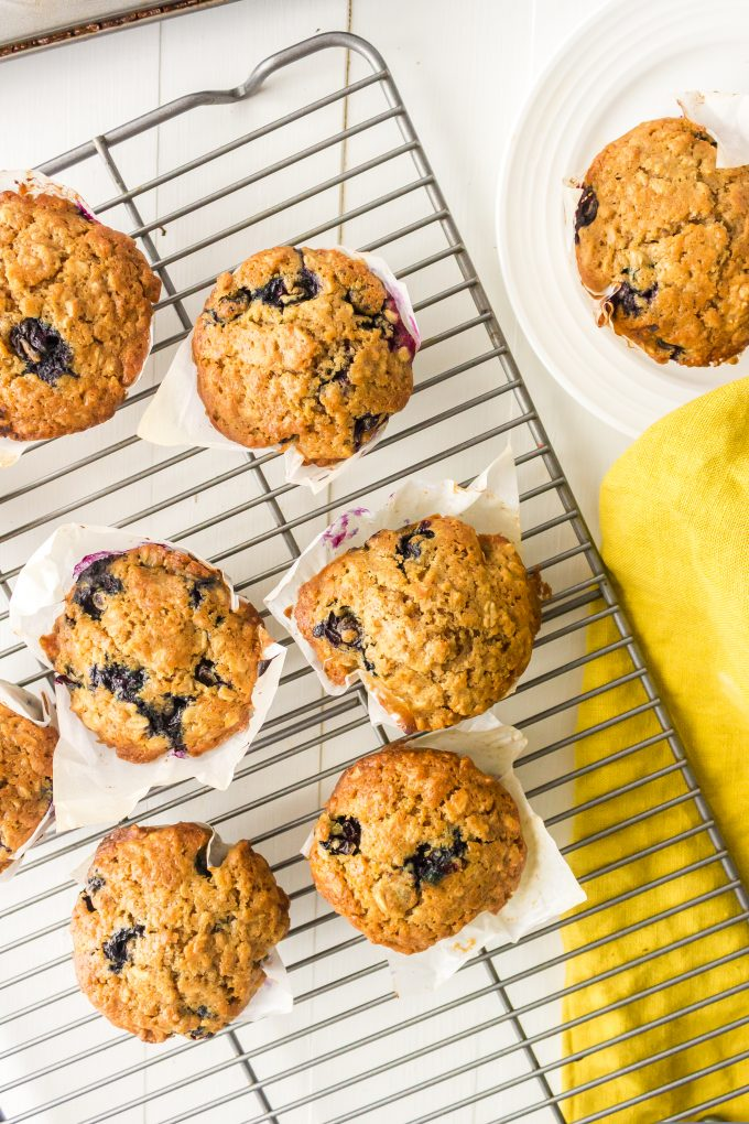 oatmeal blueberry muffin